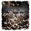 Thumbnail: Tyranid Warriors