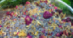 herbal_blend1_grande.jpg