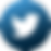 iconfinder_twitter_2142582.png