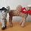 Thumbnail: Donkey and Camel