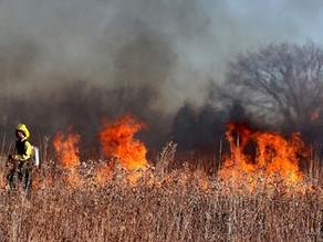 Bushfire season begins
