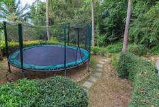 lime-v4-treehouse-gardens-7.jpg