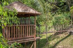 lime-v4-treehouse-gardens-8.jpg