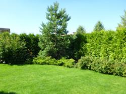 Растительный грунт для газона от компании МАКСИМА РОСТ