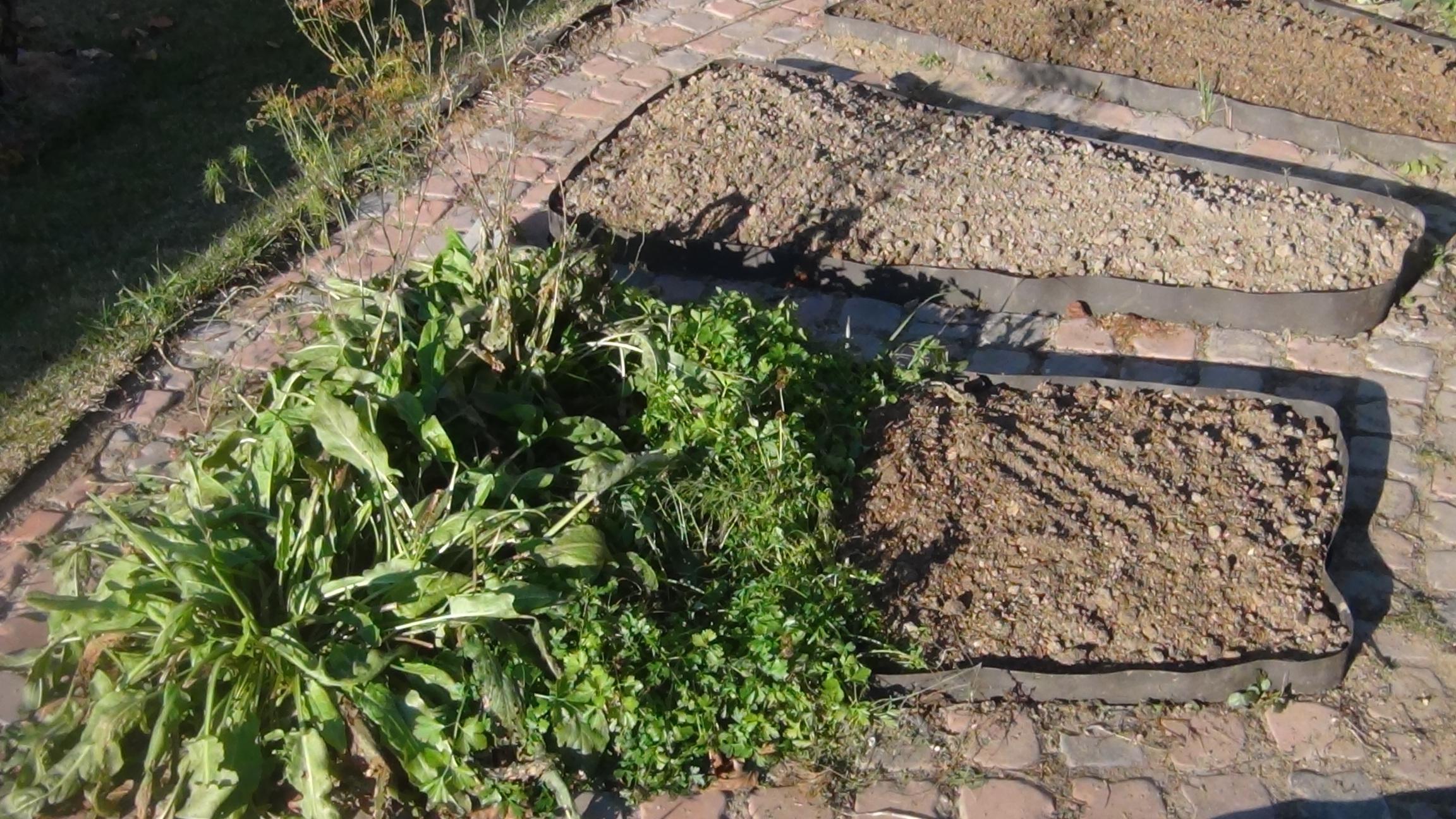 торф перегной почвогрунт для огорода