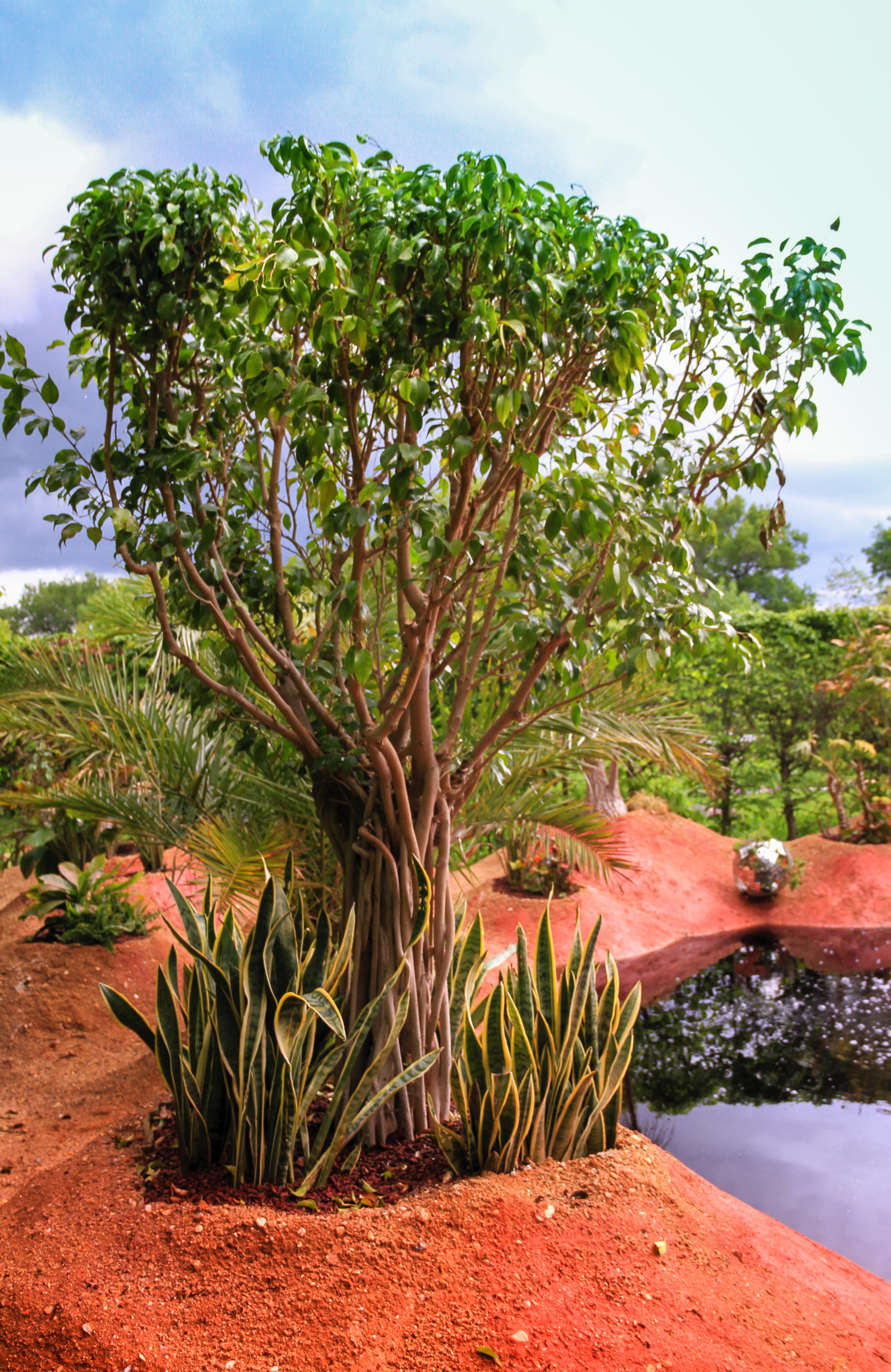 jardin de chaumont sur loire