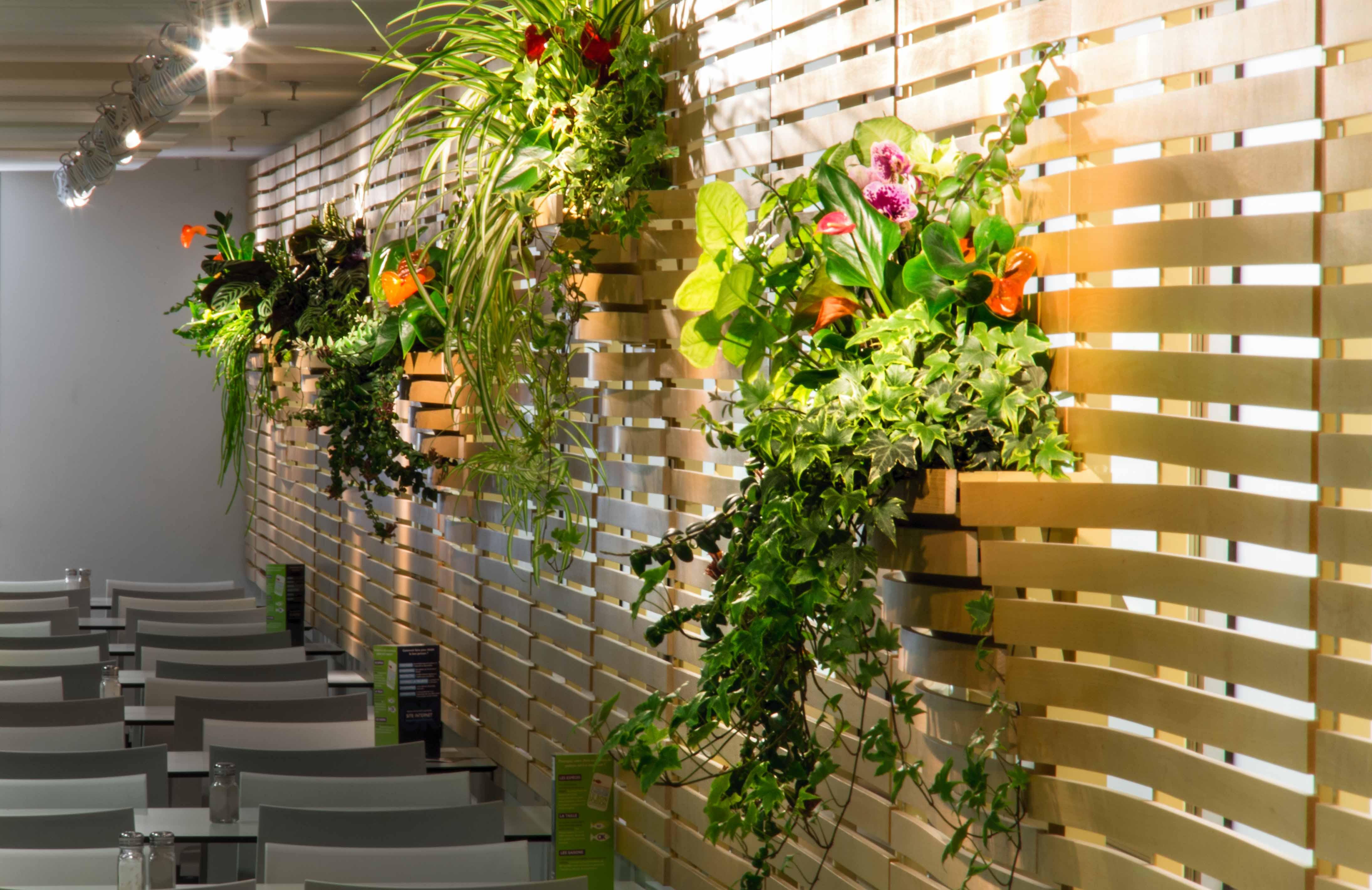 claustra, vegetal, sncf