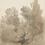 Thumbnail: HAZEL TREES