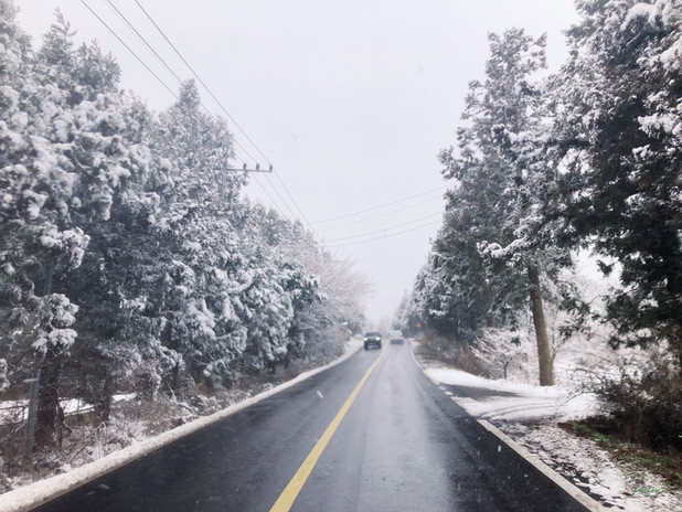 SnowyJeju2.jpg