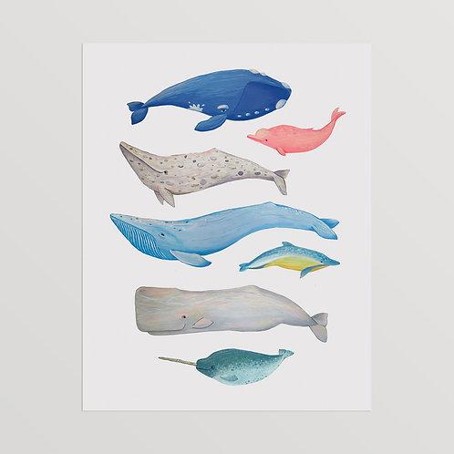Whale Buddies Art Print