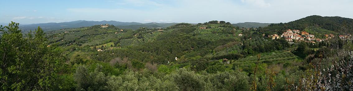 Tuscan Hills near Livorno