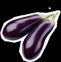 aubergine-2.png