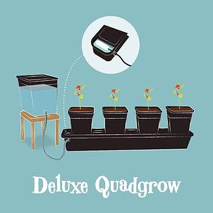 Quadgrow_Holiday_watering_kit.jpg