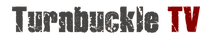 TTV_Logo_WhiteOnTransparent_edited.png