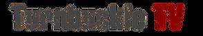 TTV_Logo_WhiteOnTransparent_edited.png