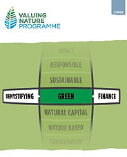 Demystifying Green Finance Cover.jpg