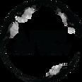A-Birds-Eye-View-Logo.png