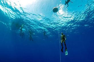 grupo freediver.jpg