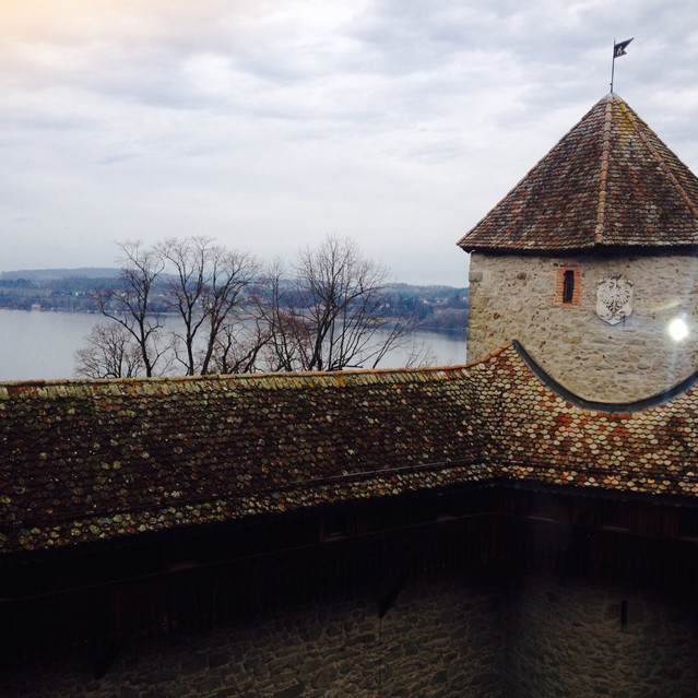 from inside the castle