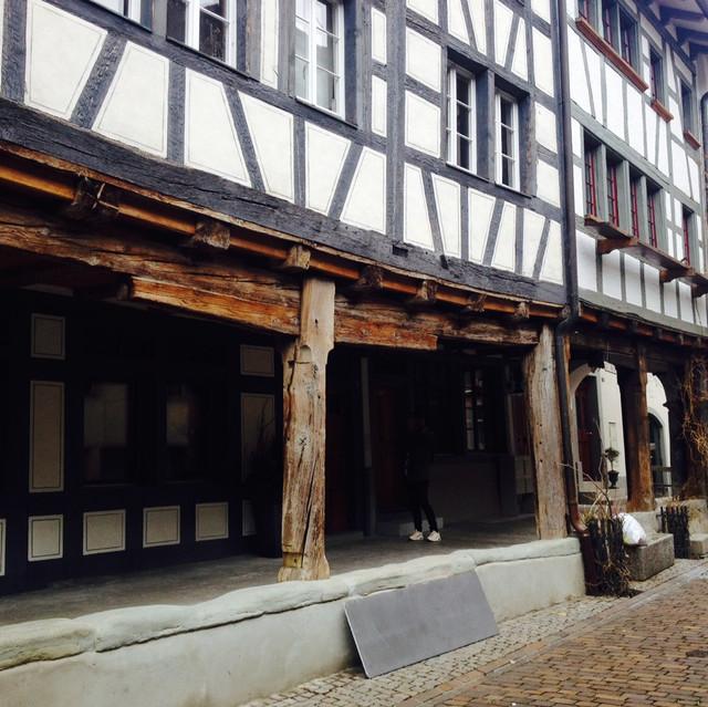 Swiss houses : )