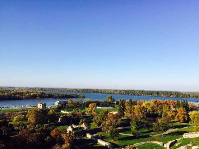 beautiful view of the Danube!