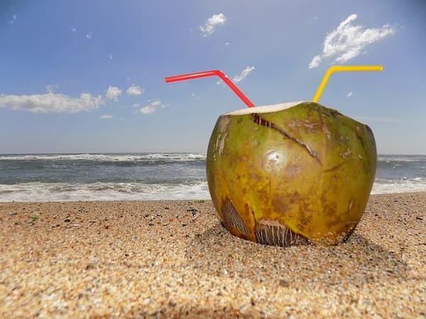 woda kokosowa, zdrowe właściwości wody kokosowej