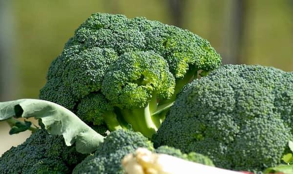 Brokuły lekiem na stany zapalne