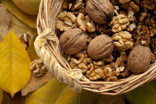 orzechy, źródło białka roślinnego