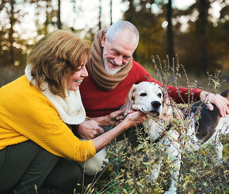 a-senior-couple-with-a-dog-in-an-autumn-
