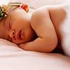 Guzman Newborn Photos