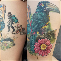 Toucan cover-up