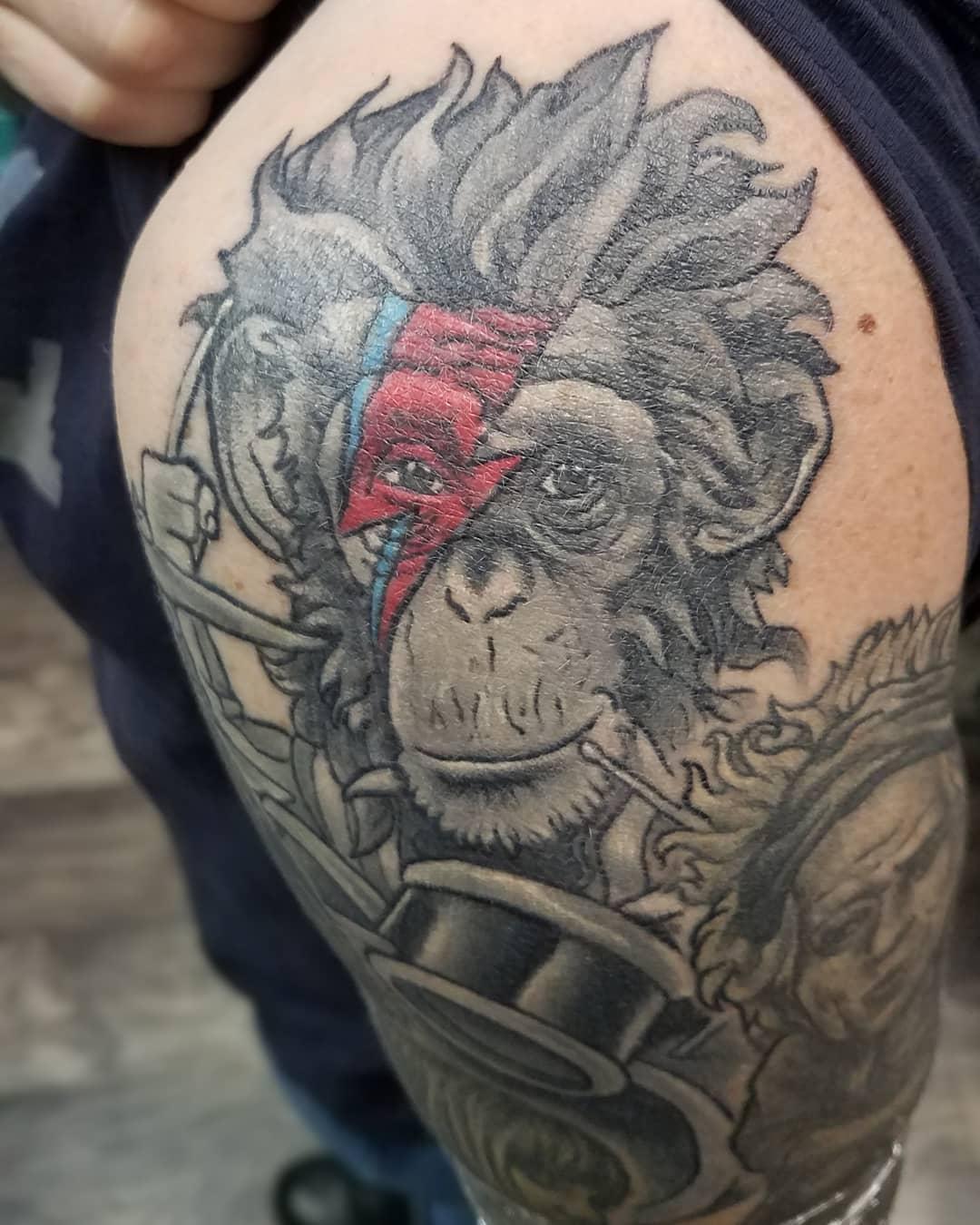 Bowie Chimp