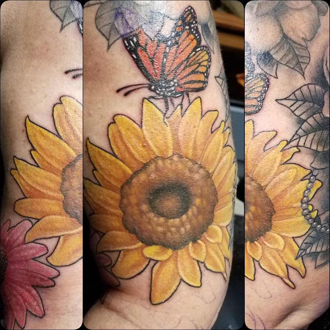 Sunflower and Monarch