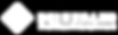 DB Logo weiß_transp.png
