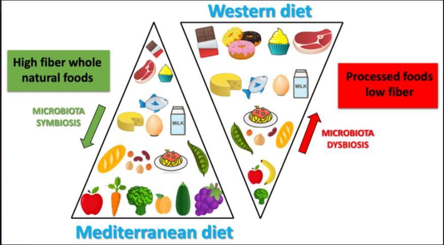Dieta mediterrânea e dieta ocidental