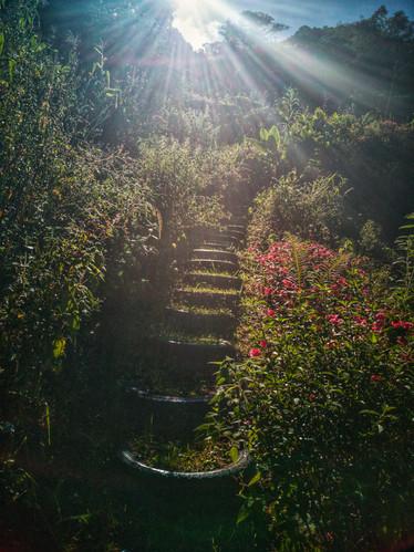 Sendero de las Mil Llantas / Thousand Tire Trail