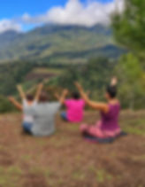 Meditacion eco horqueta