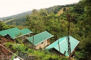 Los cuatro techos! ------------------ The four roofs!__#instalike #instagram #instapicture