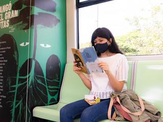 Se abre la Fiesta del Libro y la Cultura 2020