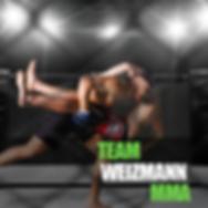 אומנויות לחימה Team Weizmann MMA