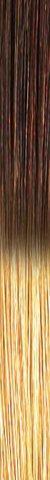 she TREEASY Shatush (Ombre) Farbe T17/20