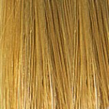 She EXTENSIVE/Klebeextensions  Farbe DB2