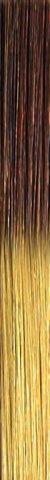 she TREEASY Shatush (Ombre) Farbe T18/24