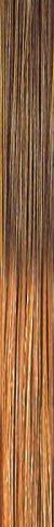 she TREEASY Shatush (Ombre) Farbe T12/26
