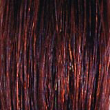 She EXTENSIVE/Klebeextensions  Farbe 32