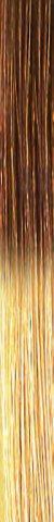 she TREEASY Shatush (Ombre) Farbe T27/20