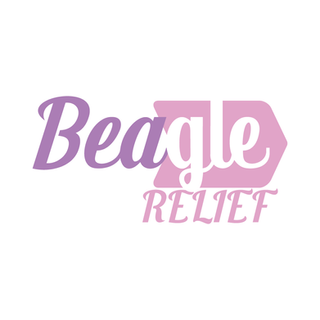 logo_03-01.png