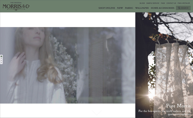 Morris & Co. website landing page with video update.