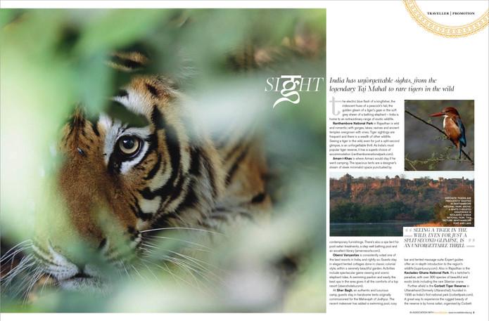 Conde Nast India Supplement - 2.jpg