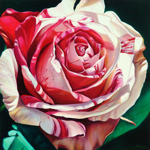 Hilda's Rose